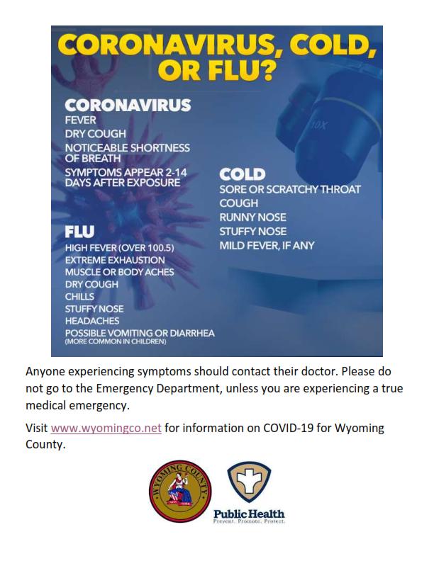 Coronavirus, Cold, or Flu