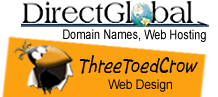directglobal web services